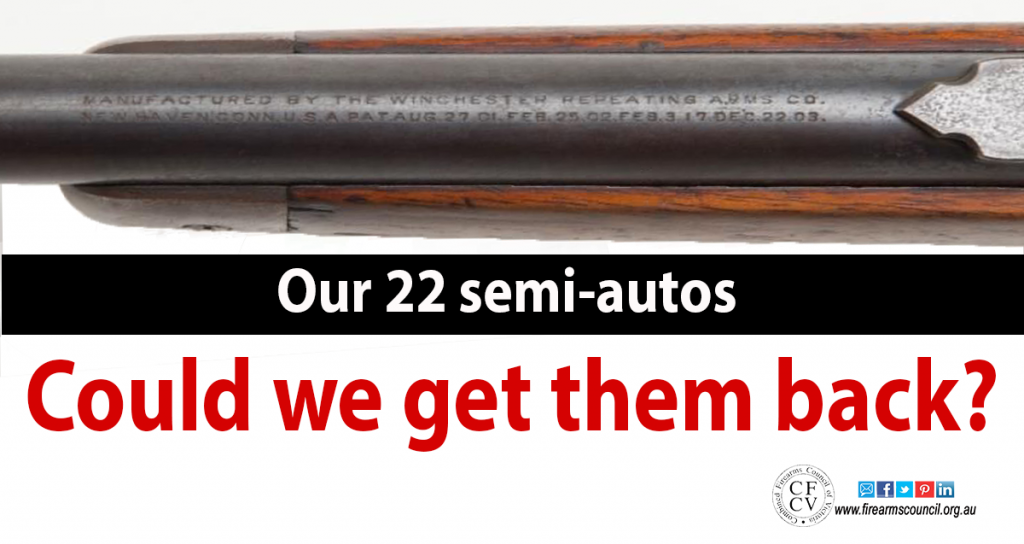 22-semi-autos-could-we-get-them-back2